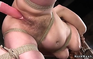 Puristic pussy slave in hogtie tormented