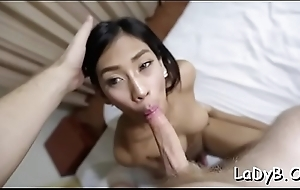 Thai shemale with a large weenie gets her anal pounded rough